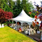 Аренда стульев для свадьбы на природе