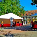 Книжный ярмарок прошел в Ивано-Франковске под открытым небом