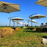 Изящные солнцезащитные зонты для лаундж-зоны